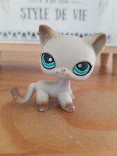 RARE figurine PETSHOP chat cat europeen short hair 391 pet shop LPS aimant