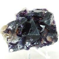 Cubic Fluorite, crystal, cluster, specimen, display, blue, purple, #R-1779