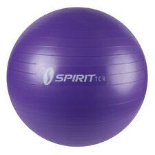 Spirit Ballon de gymnastique Ø 65 Ballon de fitness Yoga Ballon + pompe