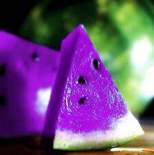 FD804 Rare Sweet Watermelon Seeds Fruit Garden Seed ~Purple~ 10PCs Free Shipping