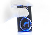 Dogue allemand, porte-clés rond, en cristal, qualité, Crystal Animals FR