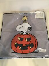 Pottery barn kids teen peanuts snoopy pumpkin halloween pillow cover Woodstock