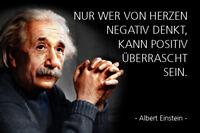 Albert Einstein Spruch 8 Blechschild Schild gewölbt Metal Tin Sign 20 x 30 cm