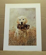 Ready to Hunt by Lynn R Kaatz Yellow Lab Puppy Hunting Camouflage