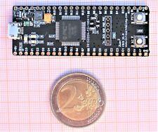 PIC32MZ Breadboard Development Board USB HS, PIC32MZ2048EFH064 252Mhz 512K SRAM
