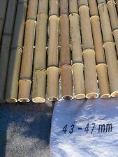 Bambuszaun  120 x 200 cm 43/47 mm Bambusrollzaun Bambusmatte