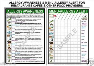 2 A4 POSTERS FOOD ALLERGY AWARENESS+MENU ALERT ALLERGEN LAW SIGN 2015 UP TO DATE