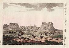 BERTUCH 1800 - Südafrika South Africa Kapstadt Quagga Strauss ORIGINAL koloriert
