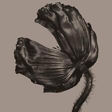 PET SHOP BOYS - Release (Vinyl LP) 2017 - Parlophone/Rhino 560174- NEW / SEALED