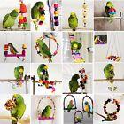 Various Pet Bird Parrot Swing Hanging Standing Chew Toys Parakeet Budgie