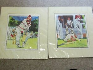 2 Cricket Cartoons Middle Stump and Jar (still wrapped)