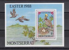 TIMBRE STAMP BLOC ILE MONTSERRAT Y&T#45 OISEAU BIRD NEUF**/MNH-MINT 1988 ~B72