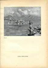 Stampa antica ISOLA DEI PESCATORI sul Lago Maggiore 1939 Antique print
