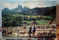 Spee Jigsaw Puzzle 1000 piece Sheep Market Mountain View Complete Cattle Sale