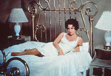 CAT ON A HOT TIN ROOF SEXY ELIZABETH TAYLOR AS MAGGIE THE CAT PHOTO