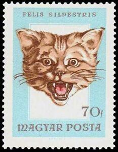 "HUNGARY - 1966 - Hunting Trophies - ""Wildcat"" - MNH Stamp - Scott #1782"