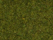 Noch 08152 Herbe à �‰pandre Pré, 2,5 mm, Contenu 120g (100g =