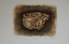 """""""La grenouille et la vipère"""" Lithographie signée Maurice GENEVOIX"""