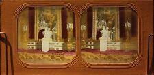 Palais de Tuileries Paris France Photo Diorama Stereo Vintage Albumine ca 1865
