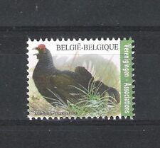 BELGIQUE - BUZIN - OISEAUX / BIRDS (TETRAS LYRE) - 1V**MNH