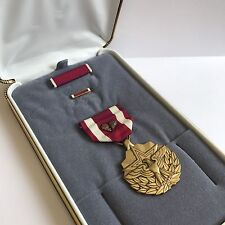 United States Of America Meritorious Service Medal Ribbon Pin Cased & Two Leafs