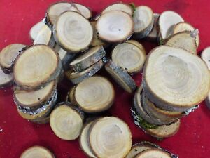 """🌲 60+ HEMLOCK WOOD SLICES 2"""" WOODEN CRAFTS WEDDING TREE CHIPS SLAB ROUNDS DRIED"""