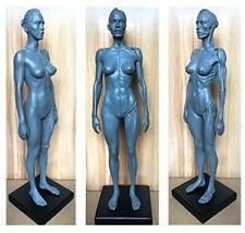 Female Anatomical Anatomy Skull Head Body Model Muscle Bone 30cm Height Us Stock