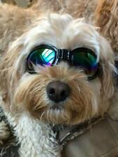 Dog Goggles sunglasses adjustable for medium to large dogs, black - new