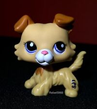 Littlest Pet Shop 2452 Collie Puppy Dog Golden Yellow & White Brown Blue Eye