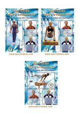 Mastering Men's Gymnastics (3 DVD Set) Free Shipping! - Coach Mark Williams