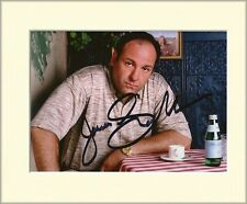 JAMES GANDOLFINI THE SOPRANOS TONY PP 10X8 MOUNTED SIGNED AUTOGRAPH PHOTO