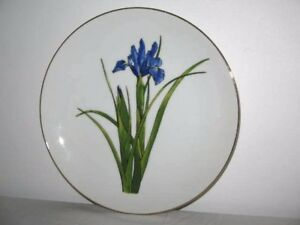Blue Iris Flower with Long Green Leaves Display Plate with Gold Rim 21.5cm Wide