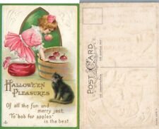 ANTIQUE EMBOSSED HALLOWEEN PLEASURES POSTCARD w/ CAT
