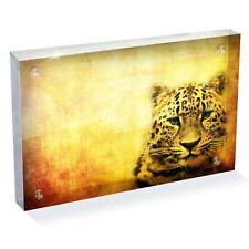 "Amazing Wild Leopard  Photo Block 6 x 4"" - Desk Office Art Gift #8241"