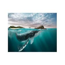 Ocean Whale Canvas Poster Art Picture Prints Home Wall Hanging Decor