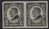 US Stamps - Scott # 611 - 2c Harding Imperf - Pair - MH                  (H-381)