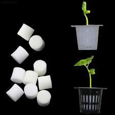 D3AB 10pcs Hydroponics Sponge Soilless Hydroponic Seeding Accessories Mini