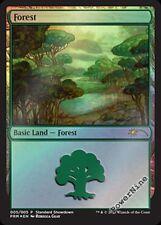 1 PROMO FOIL Forest - Land Standard Showdown / Buy a Box Mtg Magic Rare 1x x1