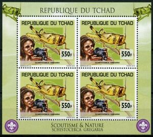 Chad 2013 MNH Scouting & Nature Grasshoppers 4v M/S Scouts Insects Stamps