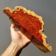 Live Edge Padauk wood Amboyna Burl Exotic Lumber Turning woodworking General
