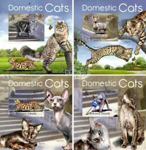 Solomon Islands - 2013 Domestic Cat Breeds - 4 Souvenir Sheets - SLM13103dlx