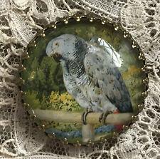 "AFRICAN GREY PARROT Glass Dome BUTTON 1 1/4"" Vintage BIRD IN GARDEN Art Print"