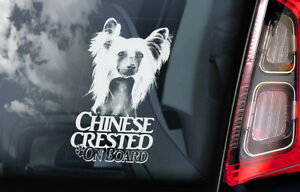 CHINESE CRESTED DOG Car Sticker, Hairless Window Bumper Sign Decal Gift Pet -V03