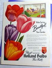 Vintage 1951 Ad Associated Bulb Growers Holland Tulips Pink Purple Red FP Color