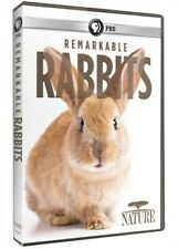 Nature: Remarkable Rabbits [New Dvd]