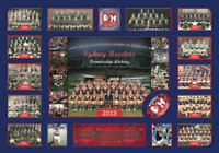 SYDNEY ROOSTERS PREMIERSHIP HISTORY Memorabilia Limited Edition Framed COL