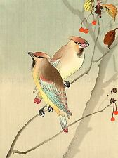 NATURE BIRD AUTUMN JAPAN OHARA KOSON POSTER ART PRINT PICTURE BB91A
