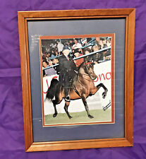 Equestrian Arabian Show Horse Picture Framed Matted English Rider Signed