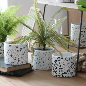 Modern Terrazzo Ceramic Planter Pot for Cactus Succulents Plant Lover Gift Ideas