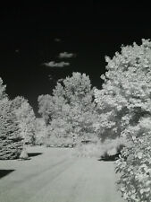 Canon G1-X 830nm Black and White Deep Contrast Infrared IR converted camera